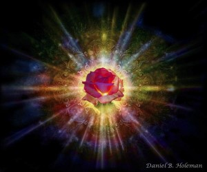 Radiant rose for overcoming grief